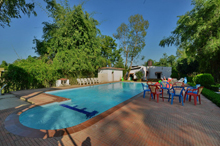 Swimming Pool GTV Resort Bandhavgarh